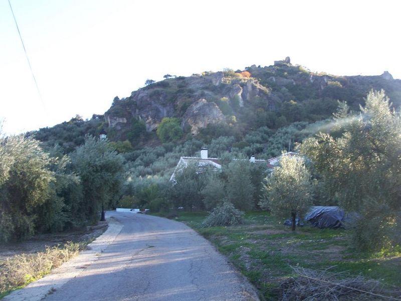 Carretera para subir al castillo del Poblado de Algar